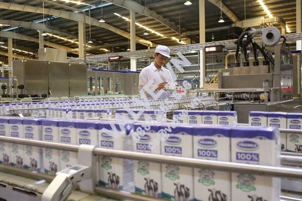 so-huu-75-gtnfoods-vinamilk-chinh-thuc-quan-ly-moc-chau-milk-4